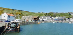 Gourdon Harbour, Kincardieshire, May 2017 (allanmaciver) Tags: gourdon aberdeenshire kincardineshire east coast scotland blue water sun warm sunny houses veassel leisure craft coastla allanmaciver