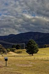 tidbinbilla portrait landscape (Seakayem) Tags: sony sly a99 fullframe minolta 28mm f28 af canberra tidbinbilla paddysriver tidbinbillarange rural tree mountain australia bush australiancapitalterritory cloud clouds sky