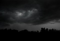 It Looks Powerfully Stormy... (freddiewentworth) Tags: outside landscape nature scenery skies clouds overcast dark grey storm trees