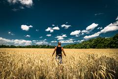 beside the way (Zscherny) Tags: korn corn feld field landscape cloud colour farbe gelb blau wolken himmel sky nikon mann men outside outdoor blue yellow deutschland sachsenanhalt weitwinkel