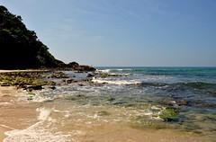 pescador solitário... (Ruby Augusto) Tags: fisherman pescador litoralnortepaulista sea mar beach mataatlântica lowtide marébaixa