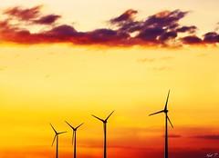 sunset for life (Karl.T - Photographie) Tags: color couleur 600d 50mm f14 usm eos paysage urbain sunset sky light france energie éolienne ciel powerfull magic bourgogne inspiredbylove