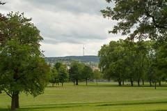 IMGP3563.jpg (Zeilenende) Tags: fernsehturm park rosensteinpark stuttgart baum stuttgartnord