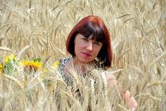 DCS_3822_00011 (dmitriy1968) Tags: portrait портрет nature природа erotic sexsual эротично beautiful girl wife люди people evening придонье девушка отдых путешествия outdoor секси пшеница wheat солнечный день sunny day