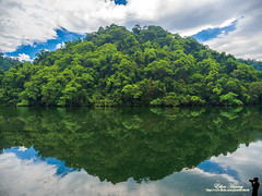 眼 a Eye (EtherH) Tags: olympus em1ii omd em1markii 眼 eye ether etherhuang 綠 藍 倒影 reflection green blue white 白 藍天 白雲 後慈湖 湖 lake tree