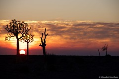 IMGP4588 (Claudio e Lucia Images around the world) Tags: sunset fishriver namibia canyon red sun clouds aloe quivertree