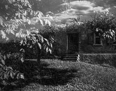 The Ultimate Hobbit Home (zoltannagel) Tags: mamiya 135 ee rangefinder messsucher bergger 200 film black white negative bw multi exposure ilfotec lc29 epson v600 hobbit house expired