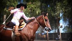 Gauchita (Eduardo Amorim) Tags: gaúcha gaúchas gaucha gauchas mulher mujer woman femme donna pampa campanha fronteira jaguarão riograndedosul brésil brasil sudamérica südamerika suramérica américadosul southamerica amériquedusud americameridionale américadelsur americadelsud brazil eduardoamorim cavalos caballos horses chevaux cavalli pferde caballo horse cheval cavallo pferd crioulo criollo crioulos criollos cavalocrioulo cavaloscrioulos caballocriollo caballoscriollos
