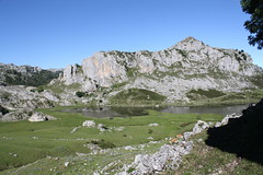 "Picos de Europa 2017 202 <a style=""margin-left:10px; font-size:0.8em;"" href=""http://www.flickr.com/photos/122939928@N08/36117023675/"" target=""_blank"">@flickr</a>"