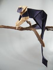 Lionhead Tamarin - Kunsulu Jilkishiyeva (Rui.Roda) Tags: origami papiroflexia papierfalten monkey singe mono lionhead tamarin kunsulu jilkishiyeva