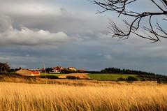 S. Martín de Podes (ccc.39) Tags: asturias gozón sanmartín podes nubes cielo campo naturaleza pueblo aldea casas nublado