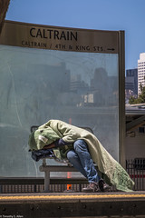 Covered (allentimothy1947) Tags: california sanfrancisco homeless caltrans bench covered blanket sleeping social problem society issue