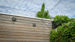 Cat Proof HFF! (peterned) Tags: hff happy fence cat proof friday canon eos 7d 1755mm july 2017