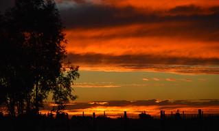Central Valley, California.