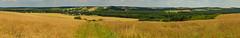 Jurassic trails - Pradła panorama (ChemiQ81) Tags: 2017 polska poland polen polish polsko chemiq польша poljska polonia lengyelországban польща polanya polija lenkija ポーランド pólland pholainn פולין πολωνία pologne puola poola pollando 波兰 полша польшча outdoor trails jura jurassic summer lato field pole zboże grain landscape
