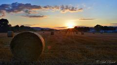 JUI_9815 (Bob_Reinert) Tags: soleil sun sunset nuages clouds coucher paysages landscape paille bottes