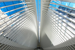 Within the Oculus (ONINOT) Tags: world trade center transportation hub oculus newyork architettura ceiling