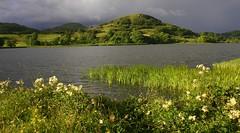 Doon Lough (flxnn) Tags: water lake lakes summer green grey skies light landscape landschaft rural outdoors outdoor ireland leitrim paysages stillness beauty