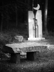 (Mr. Tailwagger) Tags: leica m10 brookline nh tailwagger sculpture garden andres bench woods alignment vietnam hoabichdao2012 summiluxm 75mm