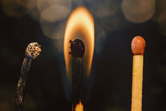 Three Stages Of Life (Mark Wasteney) Tags: macromondays three macro closeup upclose bokeh birth life death match fire hot burnt flame 3 trio
