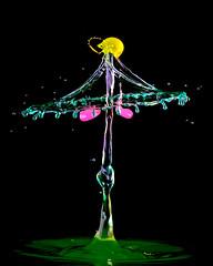 New Drop (butchinsky) Tags: tropfenfotografie tat tropfenauftropfen tropfenskulpturen tropfenfoto technischefotografie droplet dropart dropingwater deutschland dreiventile drops wwwschmidhelmutde waterdropart wassertropfen wasser watersculptures wassermitsahneundlebensmittelfarbe waterdropphotography wasserskulpturen helli helmutschmid helmut highspeed butchinsky bavaria bayern butschinsky lightsculptures münchen