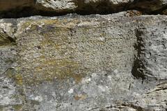 0014 Greek Wall Inscription, Near Baptistry, Butrint (2) (tobeytravels) Tags: albania butrint buthrotum illyrian greek wallinscription