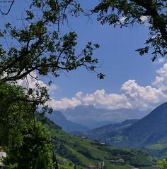 View of the Rosengarten (jehazet) Tags: italië italy dolomiti bergen mountains landschap landscape rosengarten catinaccio jehazet explore