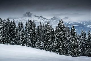 Haute-Savoie, Mont-Blanc, 19
