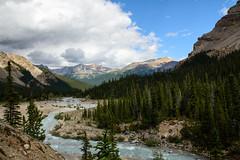 Bow River (tylerhuestis) Tags: banff banffnationalpark alberta canada nationalpark nature landscape glacierriver