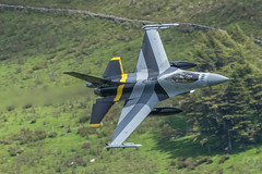 3C4A2686 (Danny Jones' Photography) Tags: baf belgian belgium airforce stinger 1squadron 1stsquadron f16 fighterjet fighterpilot fightingfalcon lowlevel machloop northwales cadwest cad cadeast talyllyn dollgellau machynlyth warmachine special scheme