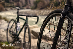 (Yerko Cortes) Tags: paisajes paisaje photography fotografia santiago chile ycgalgo fixie fixedgear nature forest photos bike