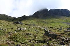 Vallon de Barneuza, Val d'Anniviers (bulbocode909) Tags: valais suisse valdanniviers vallondebarneuza coldesarpettes montagnes nature rochers brume vert mottec zinal
