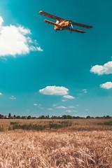 Flying away (Attila Nátz) Tags: summer wheat blue plane fly lébény hungary magyarország attilanátz