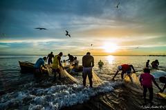 Pêcheurs, Carbet, Martinique (Sylvie AUZILLON R-C) Tags: lecarbet pêche pêcheur mer bateau