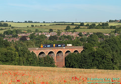 20309+20308_04-07-2011 (LinesideSouthEast) Tags: class20 diesellocomotive directrailservices drs flasktrain freight nuclearflasktrain nucleartrain rail railfreight railroad railway railways track tracks train trains poppies poppyfield