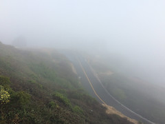 Downhill under the lookout. (mr0grog) Tags: twinpeaks iphone sanfrancisco california unitedstates us