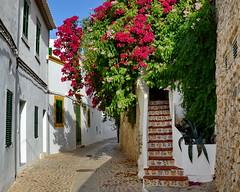Ibiza (gerard eder) Tags: world travel reise viajes europa europe españa spain spanien baleares ibiza streetlife street städte stadtlandschaft streetart outdoor city ciudades