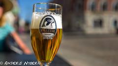 Beer (AndersNyberg) Tags: öl beer glas bägare skum pilgrimsfalk falkon foam cup glass