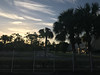 iPhone 7 (Håkan Dahlström) Tags: 2017 iphone iphonephoto photography naples florida unitedstates iphone7 f18 12400sek iphone7backcamera399mmf18 uncropped 120308072017071127 lakepark us