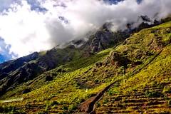 DSC_1035c on  the way to Macchu Picchu (camera30f) Tags: train route macchu pichu andes mountains peru latin america incas clouds white vegetation green blue skiies citadel day daylight sunny weather scenery