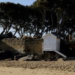 Noirmoutier (67) thumbnail