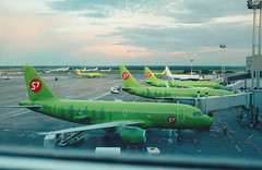 S7 Airlines at Domodedovo Airport (Kirill Ryzhkov) Tags: s7 domodedovo