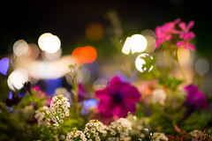 170720_MKD_StreetArtPcR_039 (Matou MKD) Tags: streetart strasbourg flower light flickrunitedaward amazing lovelyshot