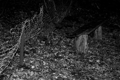 Waldhusener Forst 9 (Von Noorden her) Tags: lübeck waldhusen forst wood forrest baum bäume tree trees cascades landscape timber nature natur leaves leave blatt blätter äste branch branches schleswigholstein deutschland black white blackandwhite bw sw schwarzweiss colour summer spring sommer frühling herbst autumn moos moss fence ruin decay stumpf people stone grave greaves stonegreave grab steingrab megalith dark dunkle dunkel old germany