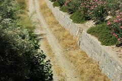 Quien me presta una escalera (Micheo) Tags: granada spain calor heat hot summertime verano sol sunshine sunny