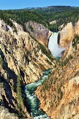 Lower Falls Yellowstone River (Albert Jafar) Tags: lowerfallsyellowstoneriver waterfalls yellowstonenationalpark wyoming river canyon photographerswharf ngc worldtrekker yellowstoneriver