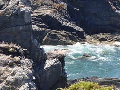 P1020577 (snapshots_of_sacha) Tags: sea atlantic atlantik meer beach algarve portugal storch stork landscape nature wild