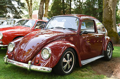 1967 VW Beetle (faasdant) Tags: 45th annual forest grove concours delegance 2017 pacific university campus classic car automobile show exhibition 1967 vw volkswagen beetle maroon lowered porsche fuchs forged alloy wheels