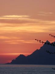 Corse - sunset (TerezaŠestáková) Tags: francie france korsika corse corsica