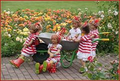 Mit der Schubkarre durch den Rosengarten ... (Kindergartenkinder) Tags: seppenrade sanrike tivi rosengarten blumen personen kindergartenkinder garten blume park frühling annette himstedt dolls milina annemoni jinka